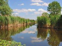 Reed Belt,Lake Neusiedler See,Austria Royalty Free Stock Image