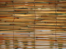 Reed Blinds Royalty Free Stock Image