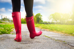Reed boots Royalty Free Stock Image