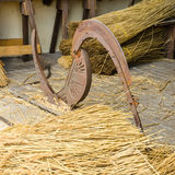 Reed cutter Royalty Free Stock Photo