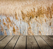 Reed and empty wooden deck table. stock photo