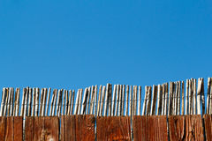 Reed fence Royalty Free Stock Images
