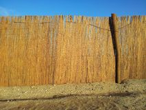 Reed fence on beach Stock Image