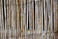 Reed fence detail  Stock Photos