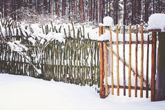 Reed Fence in Winter Stock Photography