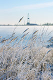 Reed in frost with a drilling derrick in the backg Royalty Free Stock Photos