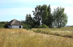 Reed House Stockbilder