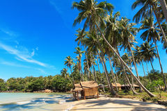 Reed huts and coconut palms. On the sandy beach. Beautiful sea landscape Stock Photography