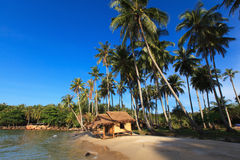 Reed huts and coconut palms. On the sandy beach. Beautiful sea landscape Royalty Free Stock Image
