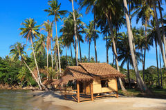Reed huts and coconut palms. On the sandy beach. Beautiful sea landscape Stock Photo
