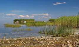 Reed islands and boats on Peipsi lake, Estonia Royalty Free Stock Images