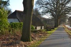 Reed in kanaal und radfahrender Straße Apeldoorns Lizenzfreie Stockfotografie