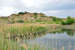 Reed and kaolin hill at the Blue Lagoon lake. Stock Photography