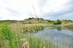 Reed and kaolin near the Blue Lagoon lake. Royalty Free Stock Images
