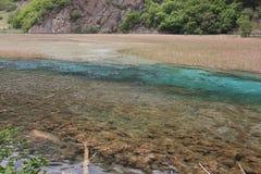 Reed lake. Reed  lake in jiuzhaigou valley scene,sichuan province Royalty Free Stock Image