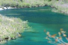 Reed lake. Reed  lake in jiuzhaigou valley scene,sichuan province Stock Image