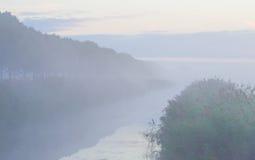 Reed a lo largo de un canal de niebla Fotografía de archivo