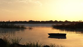 Reed Marsh and Boat at Dawn Stock Image