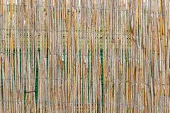 Reed mat Royalty Free Stock Photography