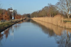Reed na estrada kanaal e biking de Apeldoorns Fotografia de Stock