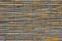 Reed panel Stock Photography