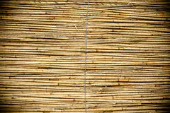 Reed Texture Stock Photos