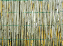 Reed Texture. Reed fence with brown and grey colors Royalty Free Stock Photos