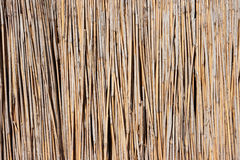 Reed umbrella Stock Photography