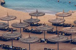 Reed umbrellas with loungers on a beautiful sandy beach.  royalty free stock photo