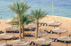 Reed umbrellas with loungers on a beautiful sandy beach.  royalty free stock photos