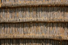 Reed wall background Royalty Free Stock Images
