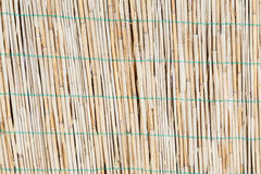 Reed wall background Royalty Free Stock Photo