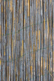 Reed wall texture Royalty Free Stock Photography