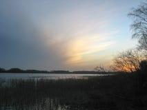 Reedbed nahe einem See während des Winters Lizenzfreies Stockfoto