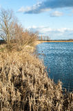 Reedbed and open water with winter skies Stock Photos