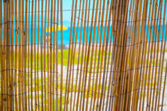 Reeds fence by the shore Stock Photo