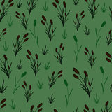 Reeds on an green background. Seamless pattern Royalty Free Stock Photography