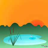 Reeds and lake. Reeds at the lake at sunset Royalty Free Stock Photo