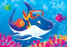 Reef 05. Illustration for children. A series  Reef . Animals of a coral reef. Shark Stock Images