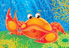 Reef 08. Illustration for children. A series  Reef . Animals of a coral reef. Crab Royalty Free Stock Images