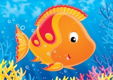 Reef 10. Illustration for children. A series  Reef . Animals of a coral reef. Fish Stock Image