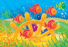 Reef 15. Illustration for children. A series Reef . Animals of a coral reef. Fish royalty free illustration