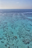 Reef aerial view Stock Photography