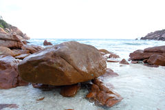 Reef on beach Stock Images
