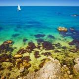 Reef beach royalty free stock image
