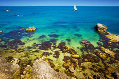 Reef beach and sailboat Stock Image