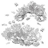 Reef Corals and Fishes. Hand drawn underwater natural elements. Sketch of reef corals and swimming fishes. Monochrome coral colony on rock. Black and white Stock Photo