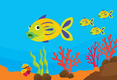 Reef fish illustration Stock Photography