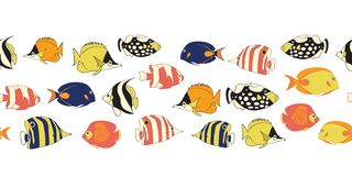 Reef fish seamless vector border. Tropical colorful fishes decor. Butterflyfish, Clown Triggerfish, Anemonefish, Angelfish, stock photography