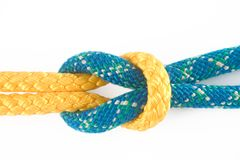 Reef knot. Tied on a gold and blue rope Royalty Free Stock Photography